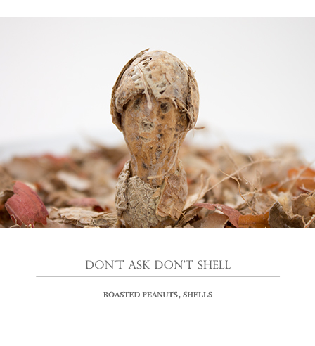 dont ask dont shell
